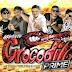 Cd Gigante Crocodilo Prime ao Vivo no Festival do Caranguejo em Quatipuru 14-07-2018 - Dj Patrese