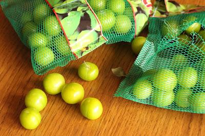 recette coreenne prunes vertes maesil