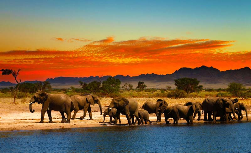 Top 10 South Africa Travel Destinations