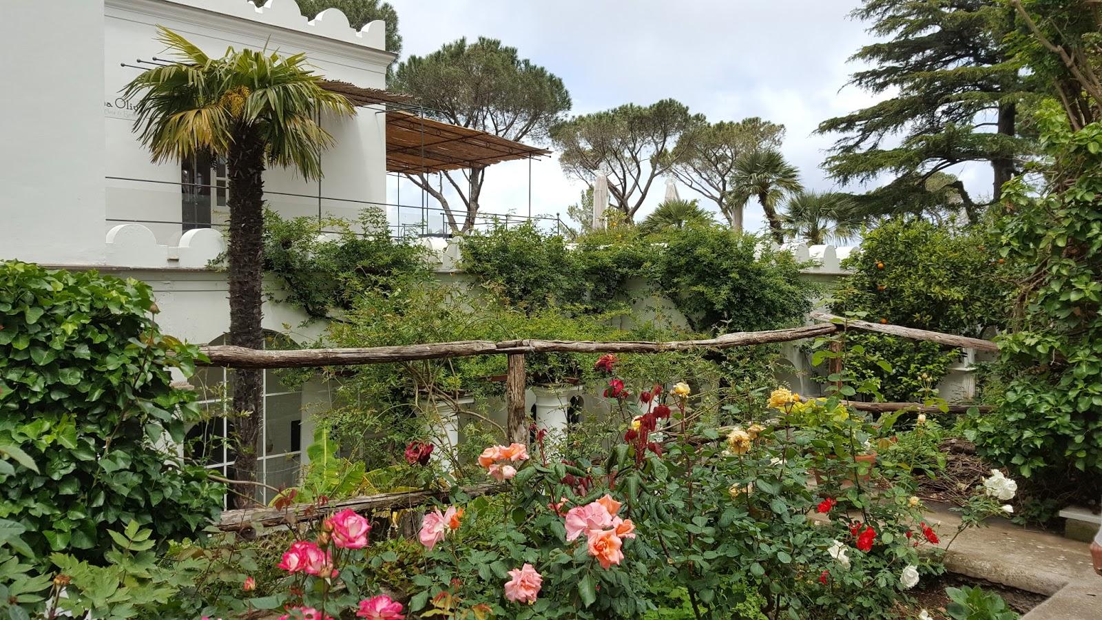 hortibus voyage picards palais et jardins prives de naples. Black Bedroom Furniture Sets. Home Design Ideas