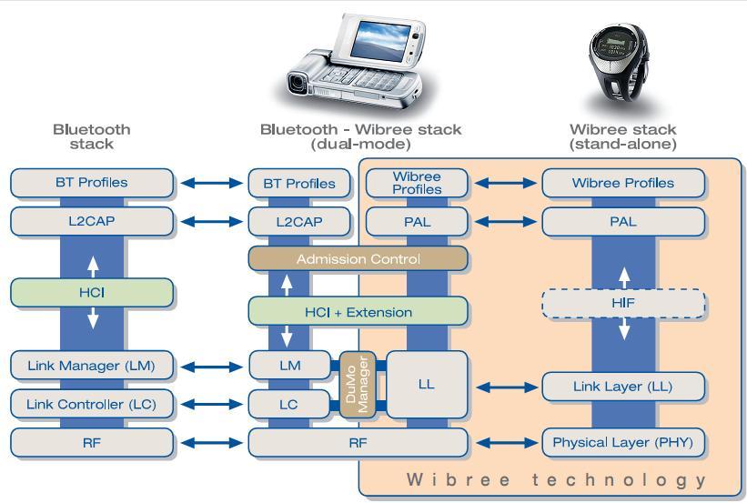 Display report download virtual seminar retinal
