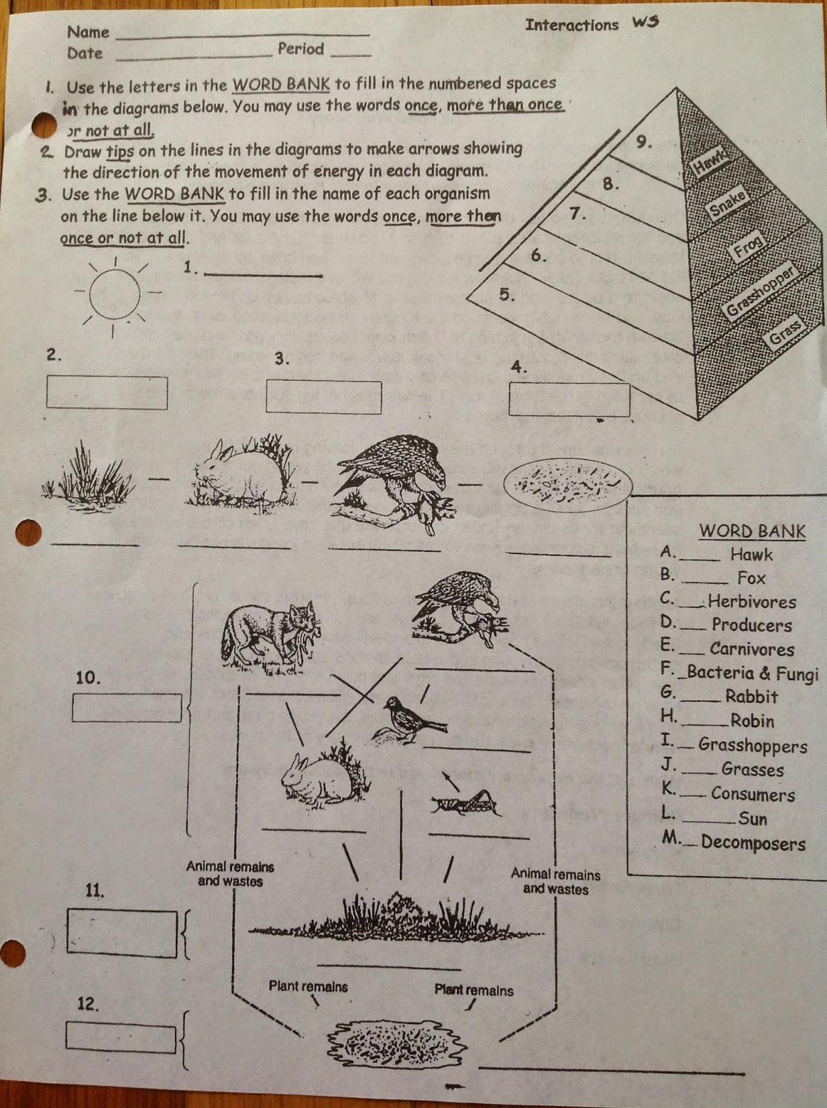 Ms Pratt S 7th Grade Science Snow Day Homework