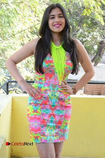 Telugu Actress Prasanna Stills in Short Dress at Inkenti Nuvve Cheppu Press Meet Stills  0125.JPG