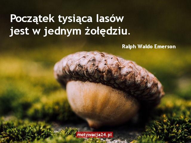 Motywacja do pracy - motywacja24.pl