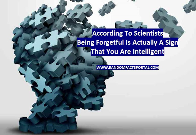 According To Scientists, Being Forgetful Is Actually A Sign That You Are Intelligent