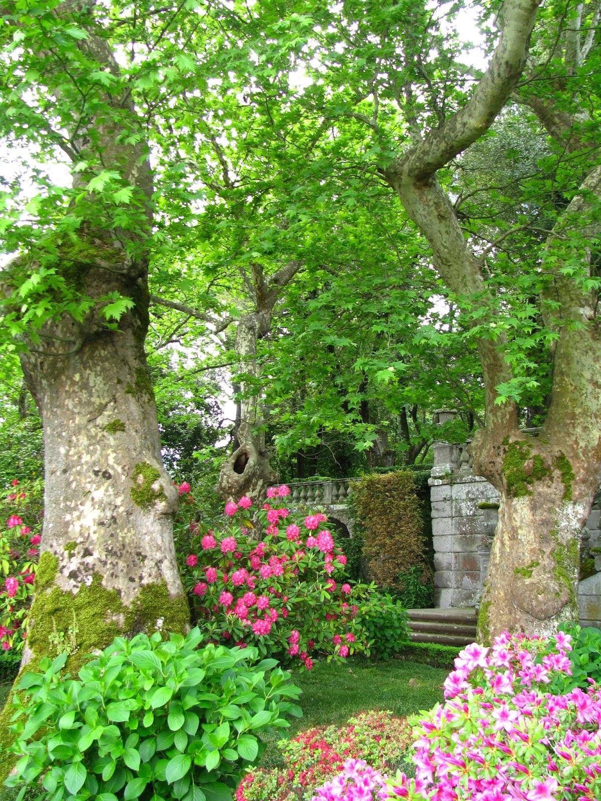 Cultural corner villa lante di bagnaia il giardino - Gradoni giardino ...