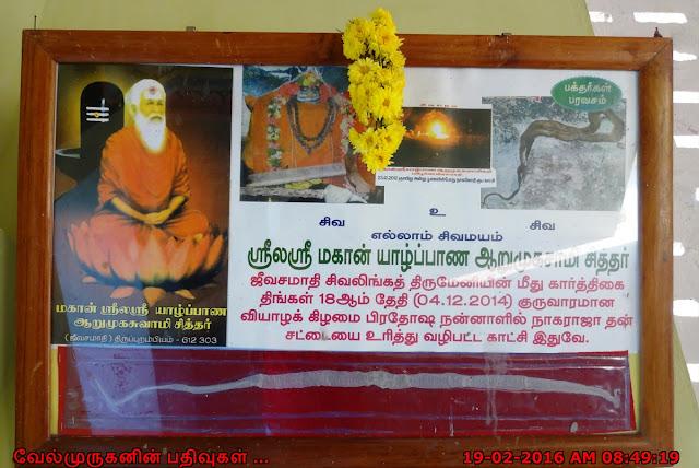ஆறுமுகசாமி சித்தர் ஜீவசமாதி