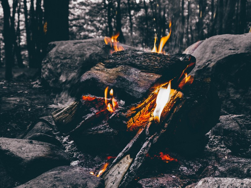 Download Wood Fire Camping on Forest HD wallpaper. Click Visit page Button for More Images.