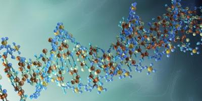 Megkezdődött az emberi DNS módosítása