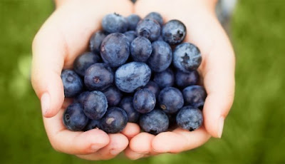 Blueberries offer benefits for post-traumatic stress disorder