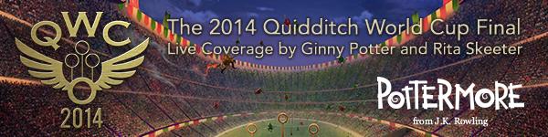 Finale della Coppa del Mondo di Quidditch 2014: commento in diretta di Ginny Potter e Rita Skeeter