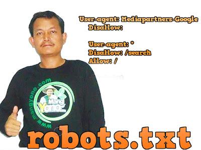 Cara setting Tag Tajuk Robot Khusus Atau Robot Header Tags di Blogger