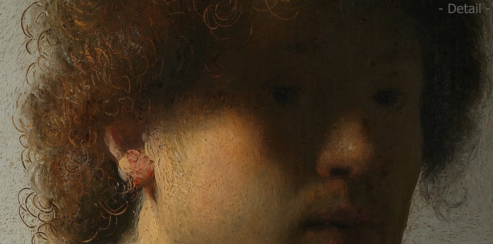 a brief look at rembrandt The legend and the man  'look at that chain [on  who obtained his information from one of rembrandt' pupils, published a brief commentary about him as part of.