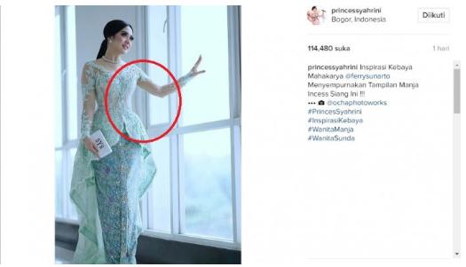 Netizen Temukan Kejanggalan Pada Foto Syahrini