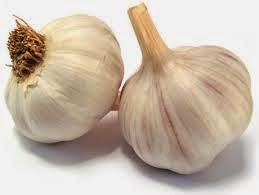 antiparassitario con aglio