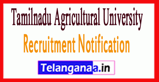 Tamilnadu Agricultural University TNAU Recruitment Notification