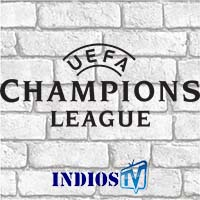 Live Streaming Champions