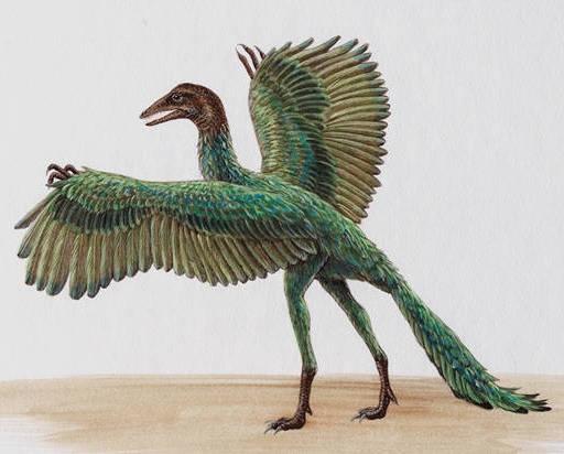 Makhluk Purba Leluhur Burung
