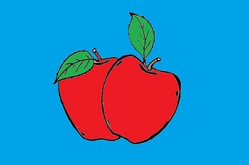 Cara Berkembang Biak Apel