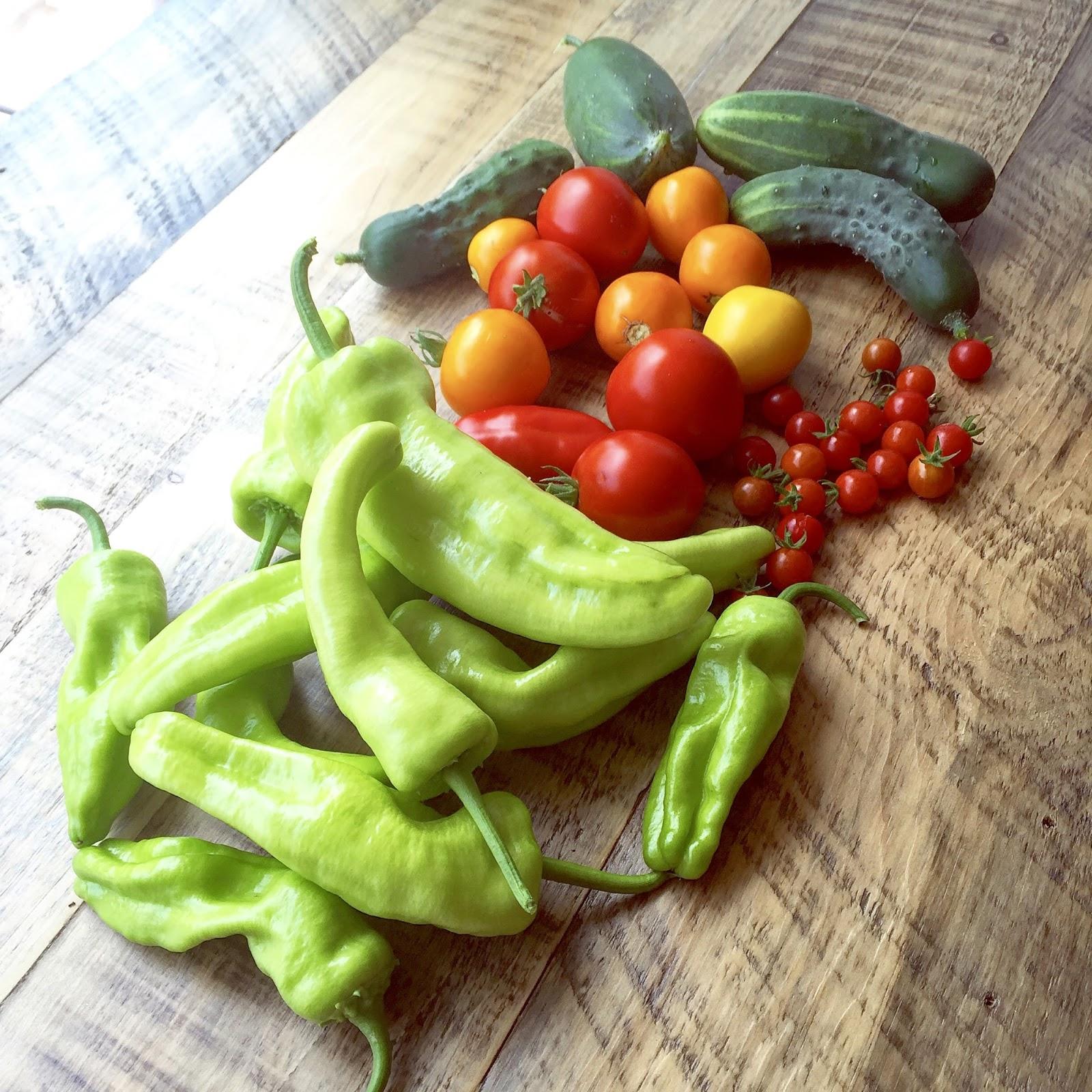 how to cook peppers zelda