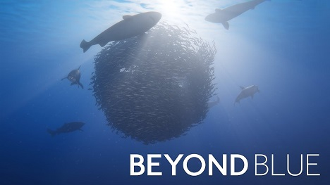 Beyond Blue Game
