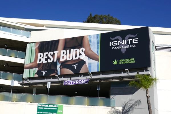 Ignite Cannabis Best buds billboard