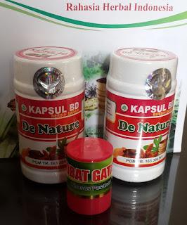 Obat Herbal Manjur Untuk Gatal Eksim Di Dada