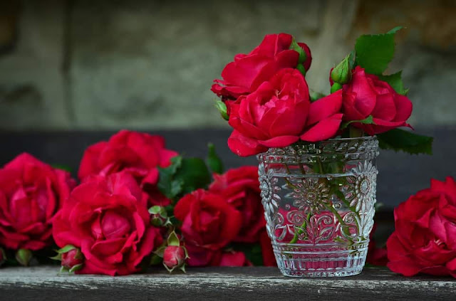 Happy Rose Day 2017 Images