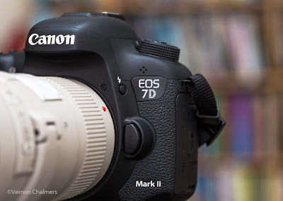 Canon EOS 7D Mark II AF System Application For Birds in Flight Photography