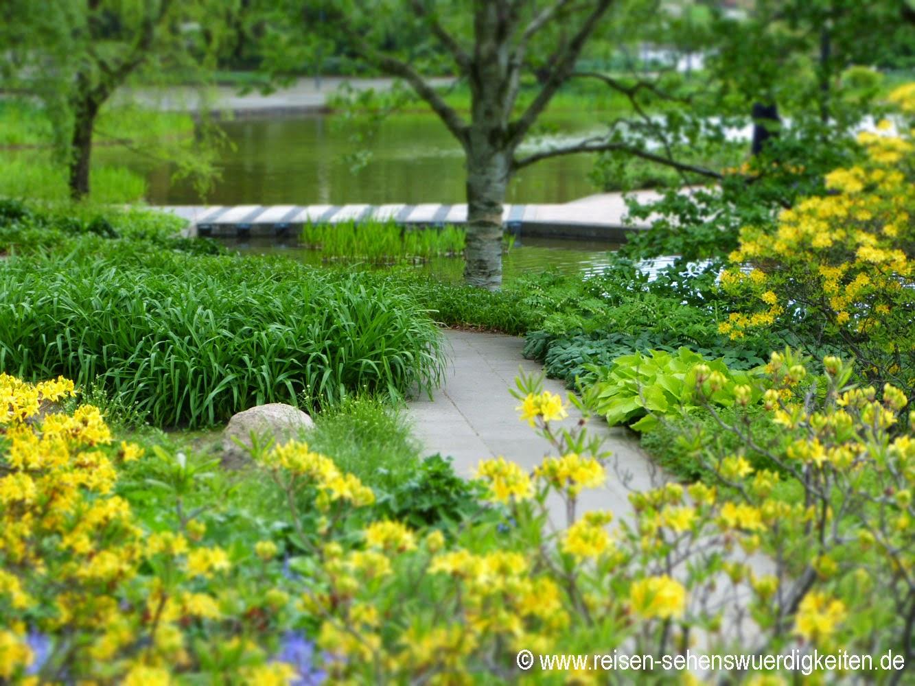 Planten un Blomen - Schönster Park in Hamburg, grün und gelb