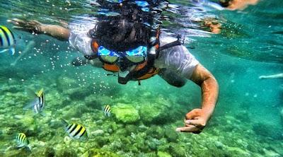 Snorkeling Di Pantai Nglambor Gunung Kidul Jogja