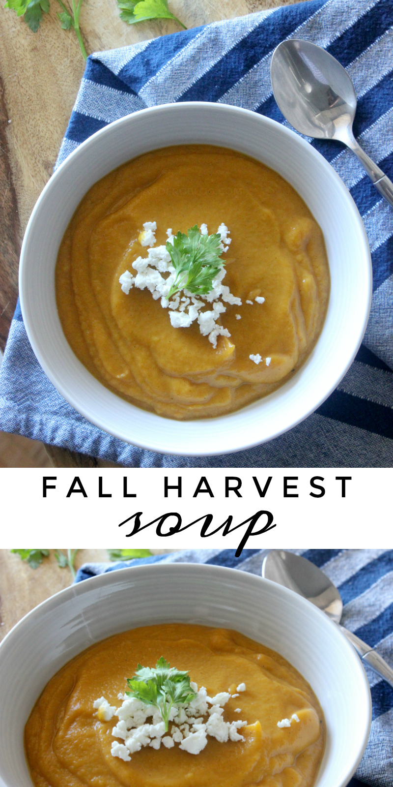 Fall Harvest Root Vegetable Soup Recipe
