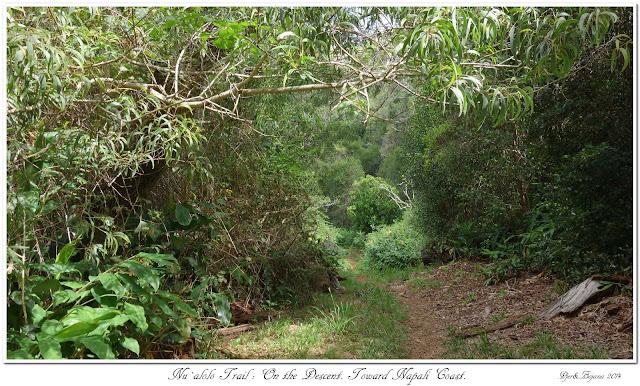 Nu'alolo Trail: On the Descent. Toward Nāpali Coast.