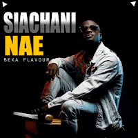 Download Mp3 | Beka Flavour - Siachani Nae