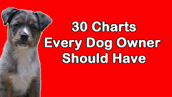 30 Charts Every Dog Owner Should Have