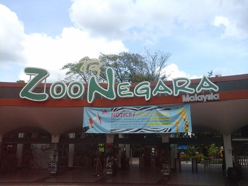 Preview Zoo Negara ambil peluang nak tengok Panda