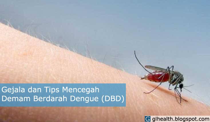 Gejala dan Tips Mencegah Demam Berdarah Dengue (DBD)