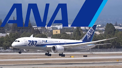 ANA airplane