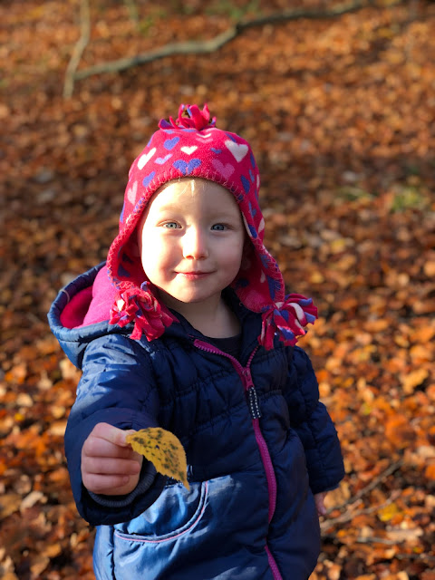 Toddler holding out a yellow leaf in an autumn scene