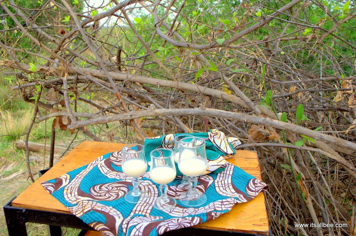 A Livingstone Island Tour on Victoria Falls