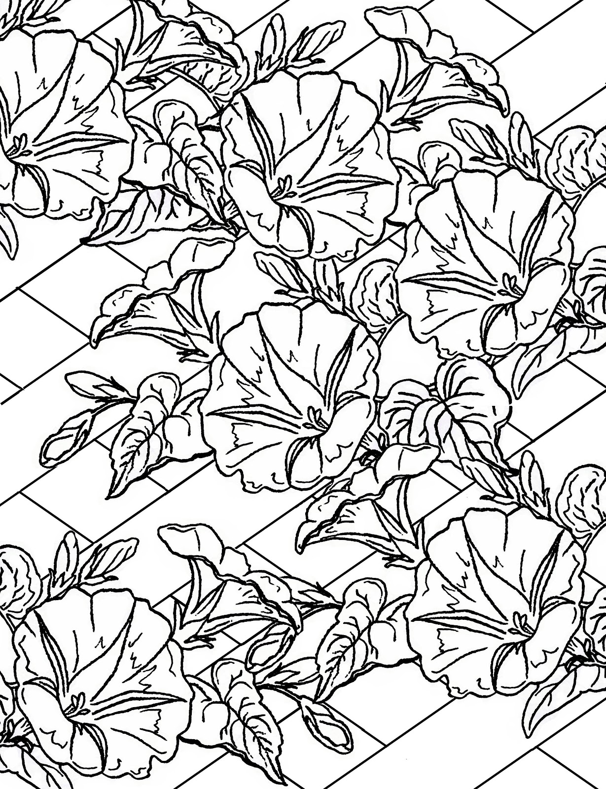 Lilac & Lavender: Morning Glory ~ Clip art & Printable