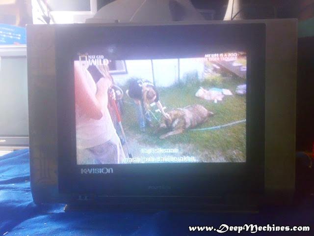 Gambar Depan TV Polytron 21-Inch Type / Model MX5203M