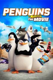 Pinguinët e Madagaskarit  Dubluar ne shqip