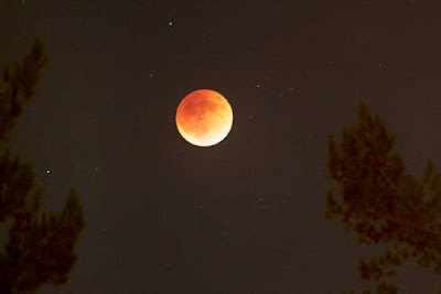 Lunar Eclipse and Blood Moon as seen from Palmia Observatory