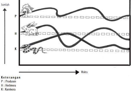 SMP NEGERI 3 BOBOTSARI: HubunganAntar Komponen Ekosistem