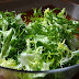 Escarola, ya las grandes propiedades de esta verdura