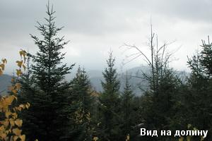 Краєвид з вершини каменя