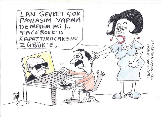 facebook paylaşım karikatür