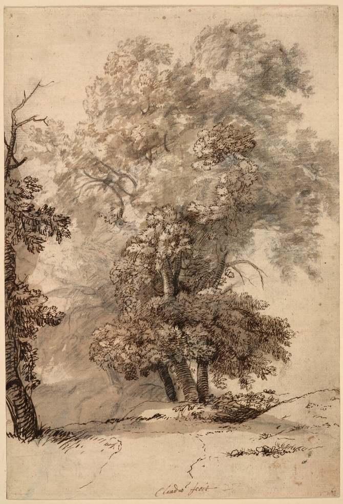 Oak tree - tutorial by micorl on DeviantArt |Tree Landscape Drawing