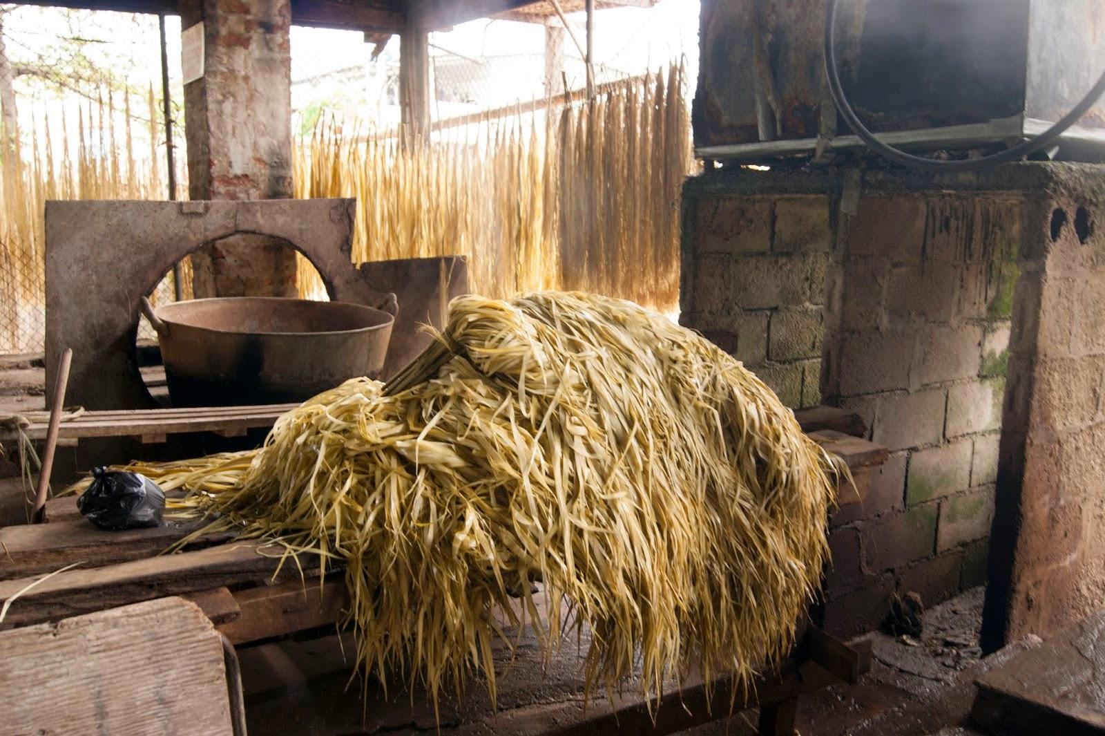 Quizás por ello no sea de extrañar que la Unesco reconociera finales del  2012 al tejido tradicional del sombrero de paja toquilla como Patrimonio  Cultural ... ab8d2d97e65